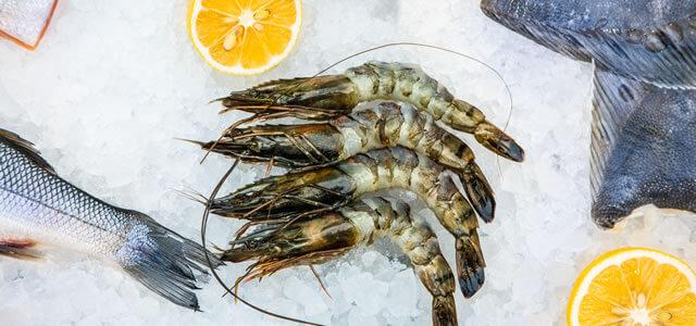 Tiefkühlkost und Fisch Belieferung für die Gastronomie